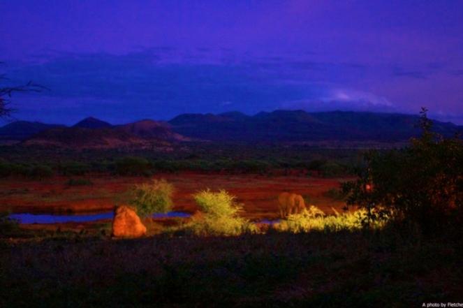 Terrace view at Kilaguni Serena Lodge - @CPF_Photography