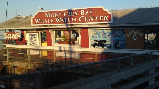 Monterey Bay Whale Watch Centre