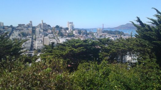 The view from Telegraph Hill
