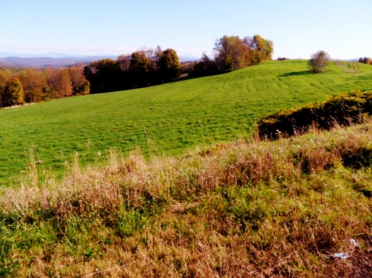 The rolling hills of Vermont.