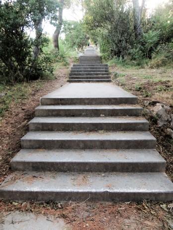 All those steps!
