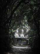 Trsteno Arboretum croatia