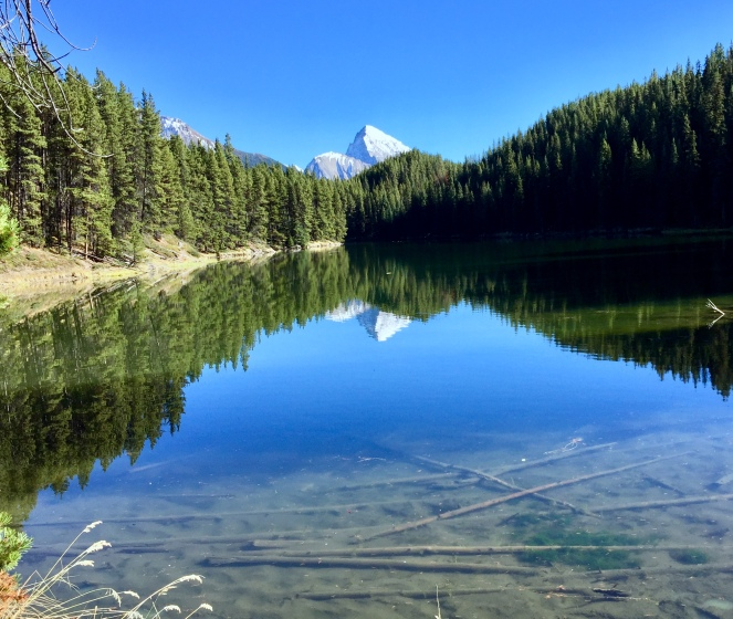 Moose Lake, Jasper National Park