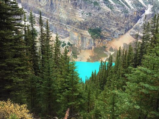 Looking down on a turquoise Lake Louise from the Lake Agnes trail