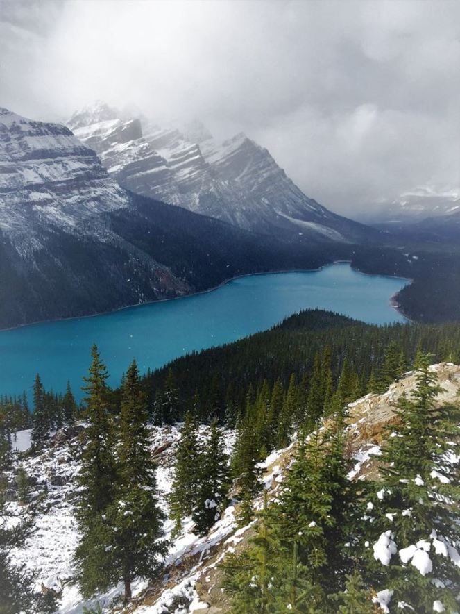Bow Summit overlooks the glacial-blue Peyto Lake in the Canadian Rockies