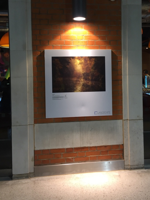 CPF Photography's autumnal canal photograph on display at London Waterloo Station