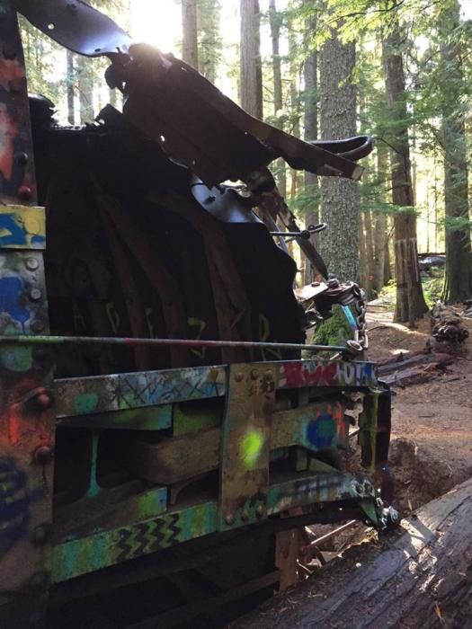 Twisted and graffitied train carriages in the woods