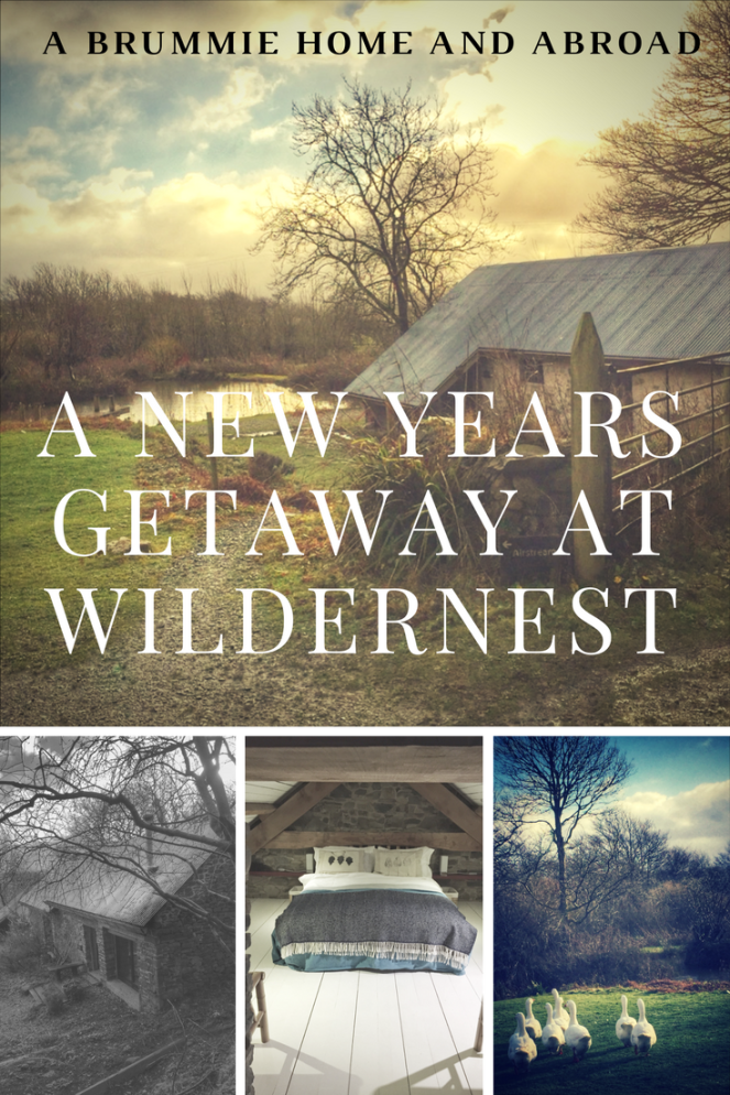 A New Years Getaway at Wildernest