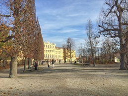 Wintery scenes at Schonbrunn Palace, Vienna