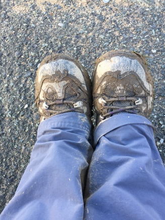 Muddy walking boots after walking the Ceredigion Coastal Path
