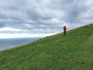 The Ceredigion Coastal Path: Cliffs above Llangrannog