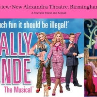 Theatre Review: Legally Blonde - Omigod You Guys!